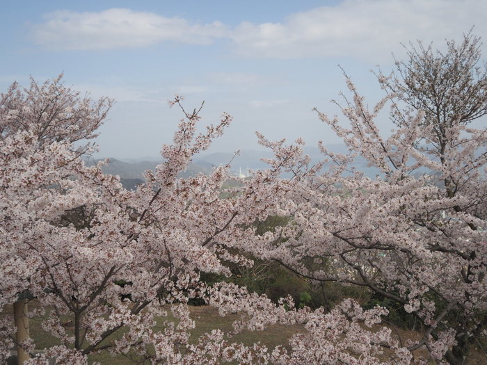 朝日山登山_c0116915_23363277.jpg