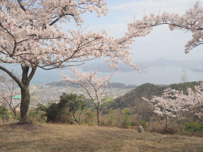 朝日山登山_c0116915_23372376.jpg