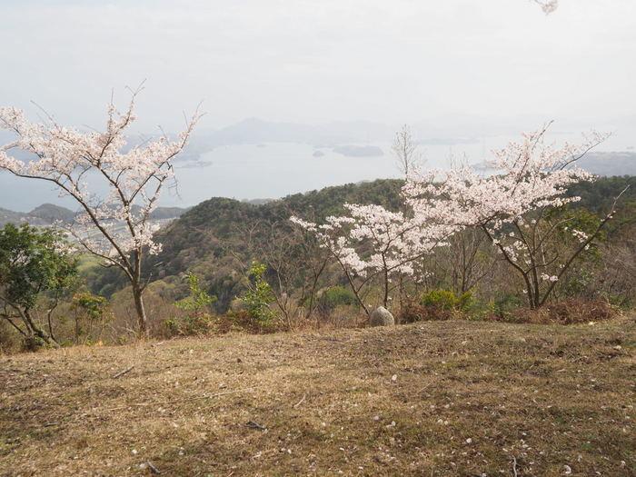 朝日山登山_c0116915_23374308.jpg