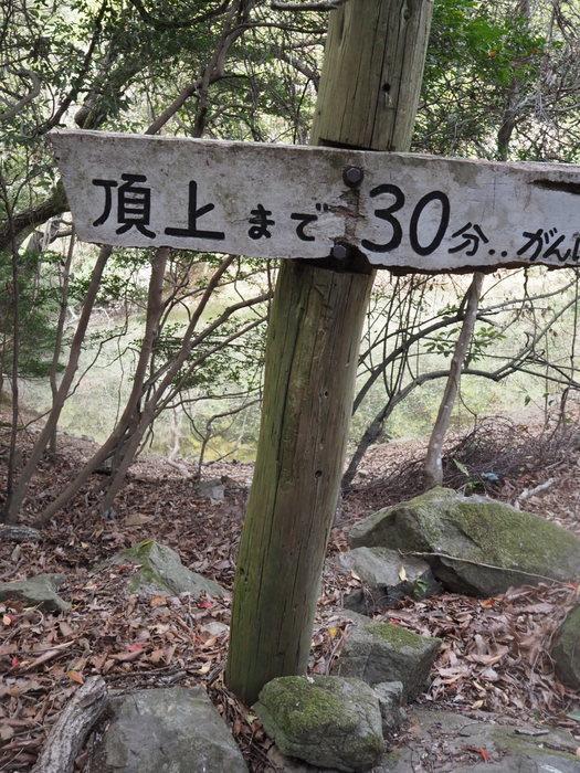 朝日山登山_c0116915_23511256.jpg