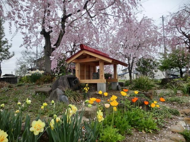 西慶寺の春_e0390829_21090219.jpg