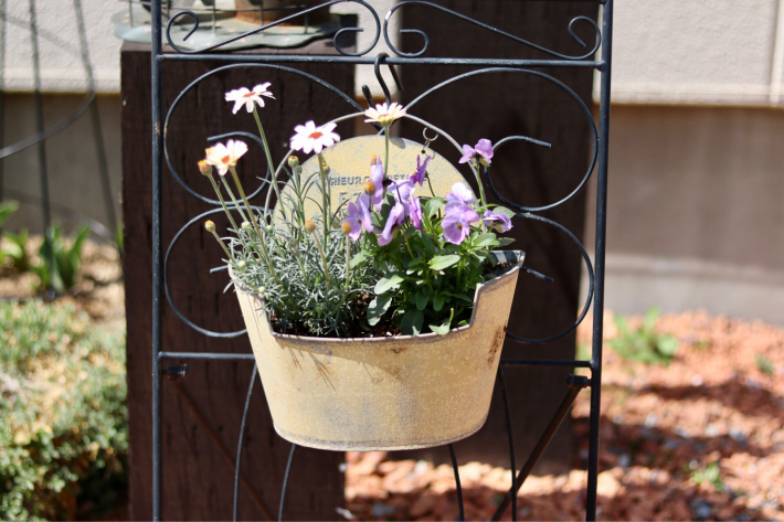 花壇周りを飾る_c0359445_23344457.jpg