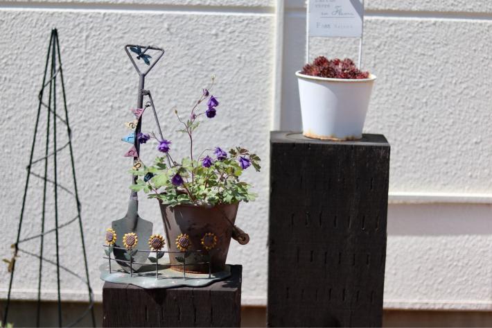 花壇周りを飾る_c0359445_23344520.jpg