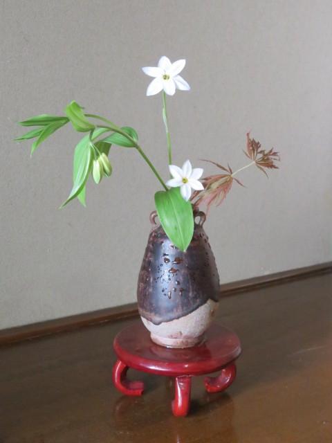 手向山(タムケヤマ)紅葉を活ける_f0329849_17052161.jpg