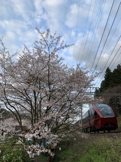 近鉄と桜_f0266284_21592457.jpeg