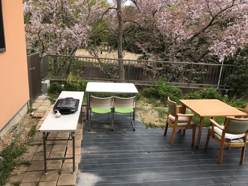 お花見会_f0376200_13511094.jpg