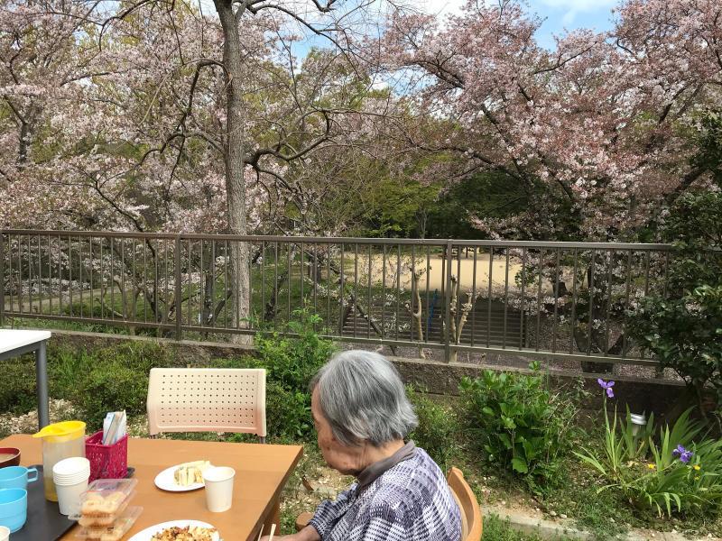 お花見会_f0376200_13515052.jpg