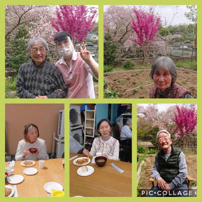 お花見会_f0376200_13522395.jpg