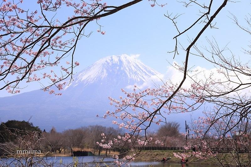 富士山と遊ぶ_f0131611_06234023.jpg