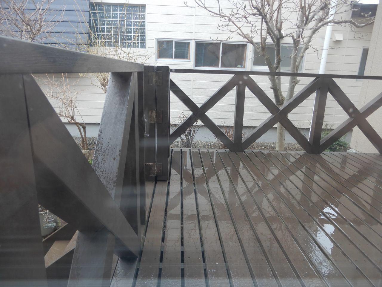 雨の日曜日_c0025115_21054299.jpg