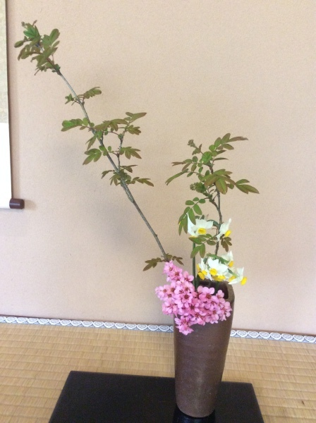 「芭蕉の館」の春③_f0289632_10380349.jpg