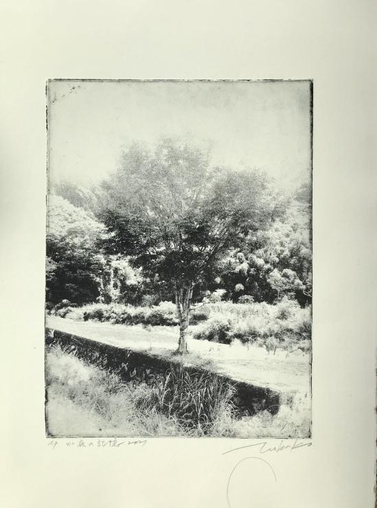 水底の記憶  フォトエッチング  京都市美術館_c0100195_09283377.jpeg