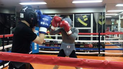 4月だし、週末だしボクシングジムへ繰り出そう。_a0134296_23532626.jpg
