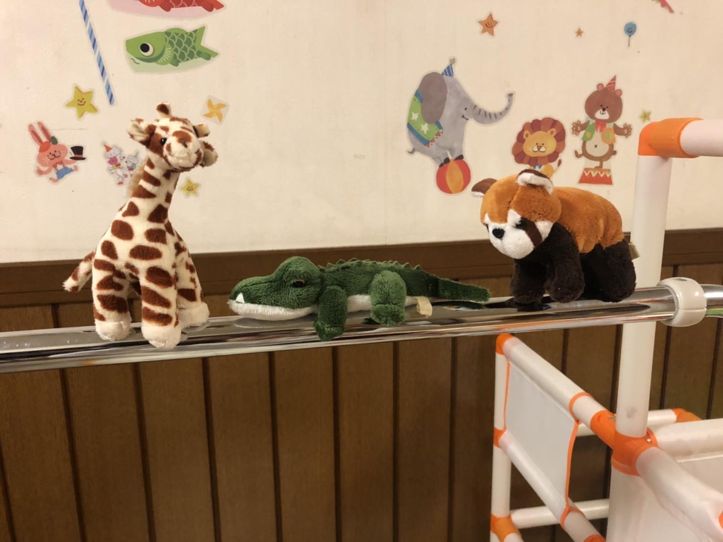 動物園_a0113003_12331830.jpg