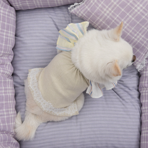 ☆ New Dog Wear ・ Louis dog ☆_d0060413_16521892.jpg
