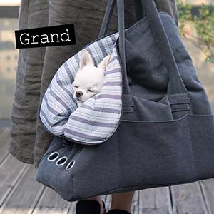 ☆ New Dog Wear ・ Louis dog ☆_d0060413_16524306.jpg