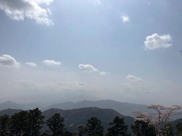 春の高尾山 2021_e0208519_09403820.jpg