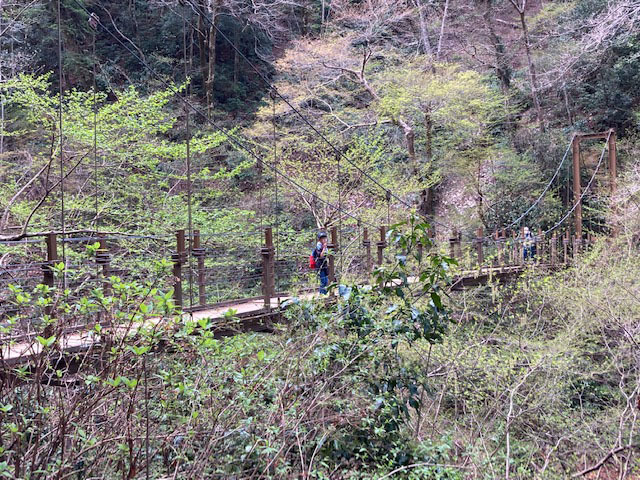 春の高尾山 2021_e0208519_09415461.jpg