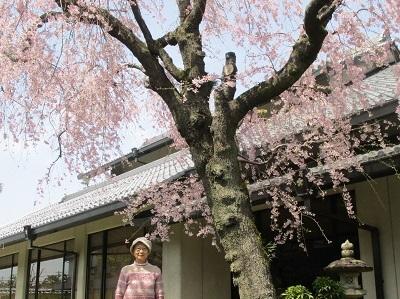 2021年の桜(2)_f0197754_17583747.jpg
