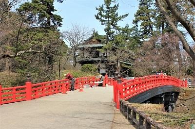 弘前公園で春探し_2021.04.02撮影_d0131668_17270618.jpg