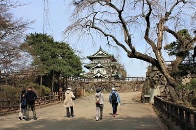 弘前公園で春探し_2021.04.02撮影_d0131668_17304883.jpg