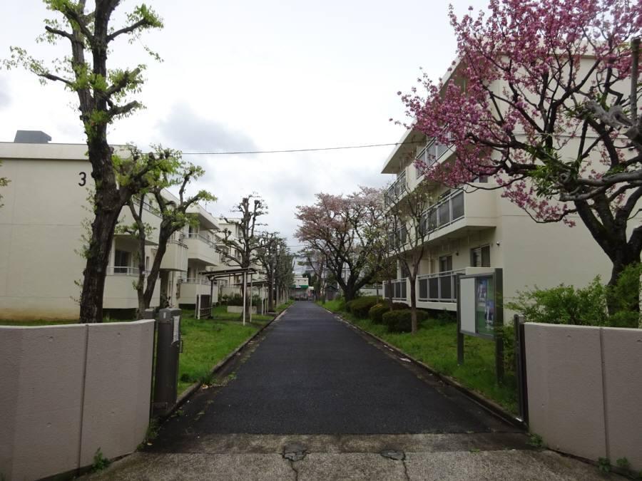東京都小平職員住宅閉鎖_f0059673_16353700.jpg