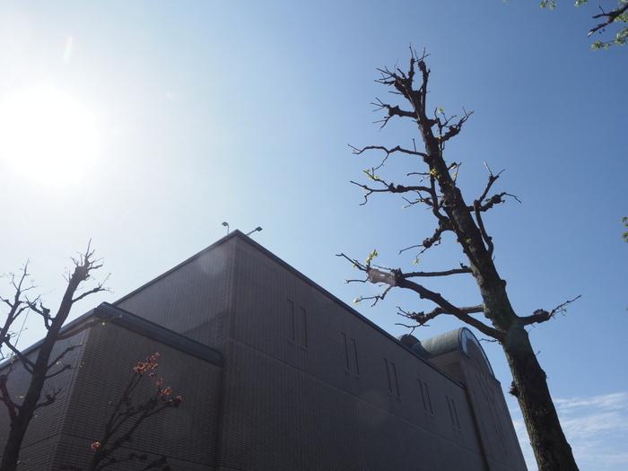 佐伯区民文化センター&五日市中央公園_c0116915_23131704.jpg