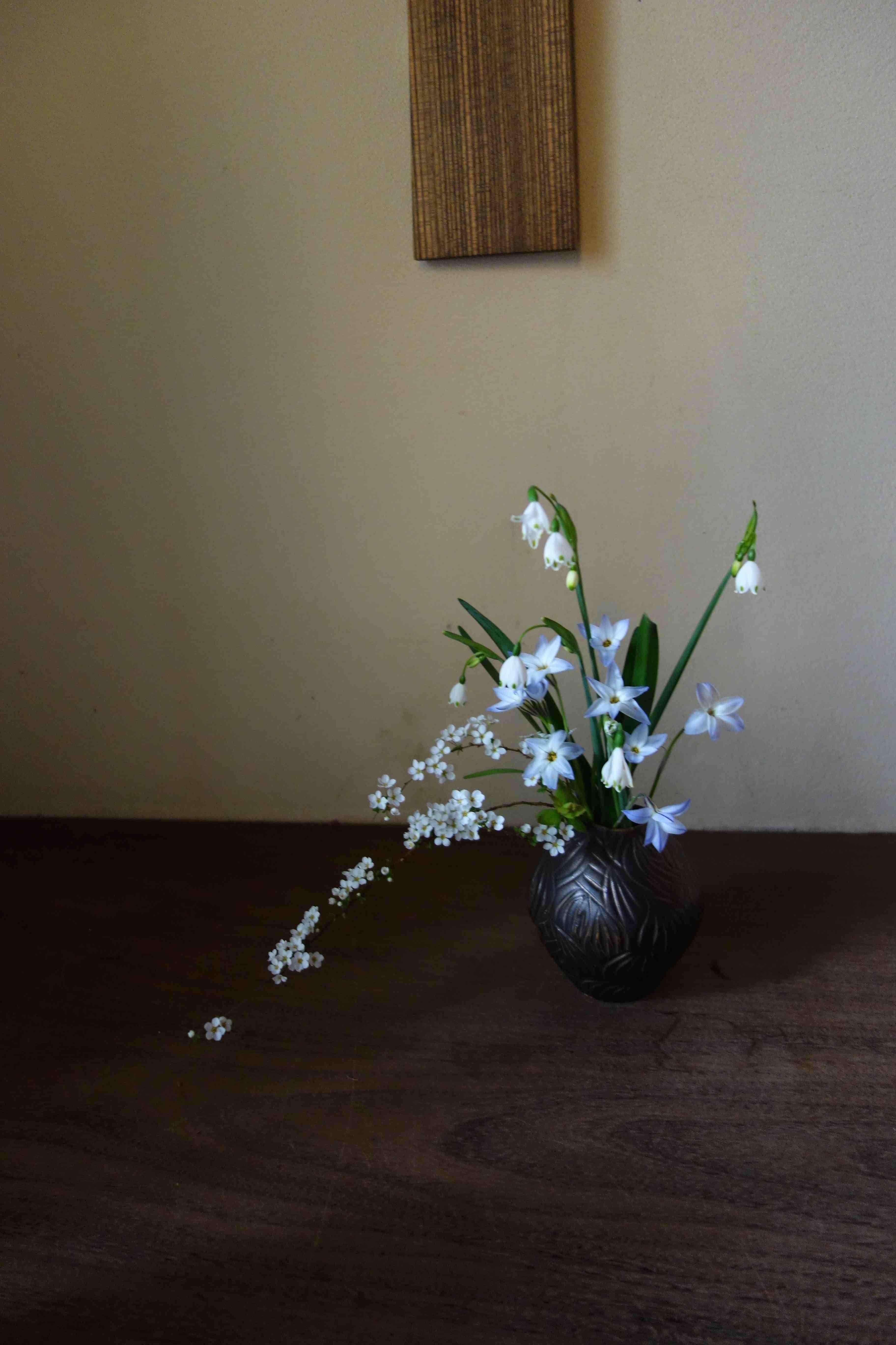 桜から新緑へ_a0197730_09300240.jpg