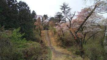 建物探訪の旅 ~三国街道塩沢宿「牧之通り」_c0146040_18283437.jpg