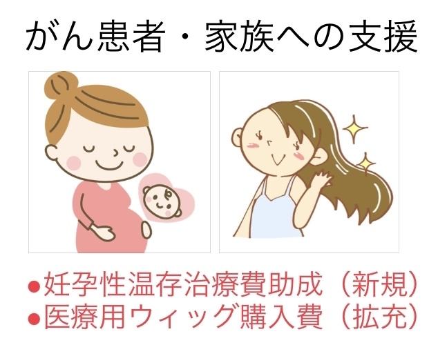 妊孕性温存治療助成・医療用ウィッグ購入費補助〜がん患者や家族への支援_b0199244_14422796.jpg