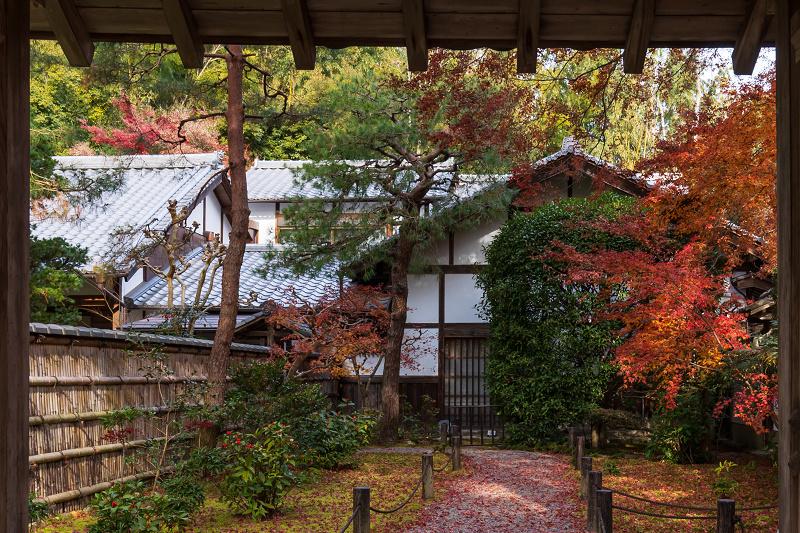 2020紅葉きらめく京都 竹の寺・地蔵院の秋_f0155048_23084837.jpg