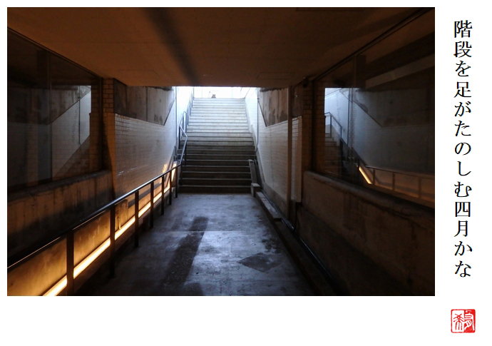階段を脚がたのしむ四月かな_a0248481_21333649.jpg