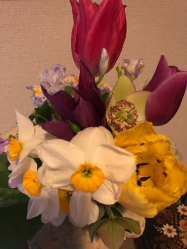 この春のスギナ よもぎで下染め_e0295491_08254600.jpg
