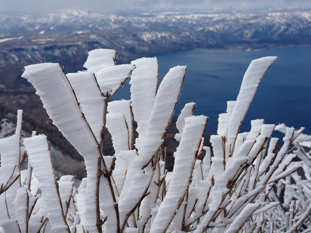 樹氷に感動の風不死岳、2021.4.6ー速報版ー_f0138096_18524787.jpg