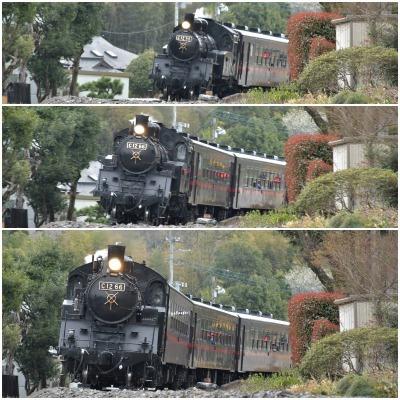 桜巡り2021 ~ 名残りの枝垂れ桜と蒸気機関車_b0356401_21565541.jpg
