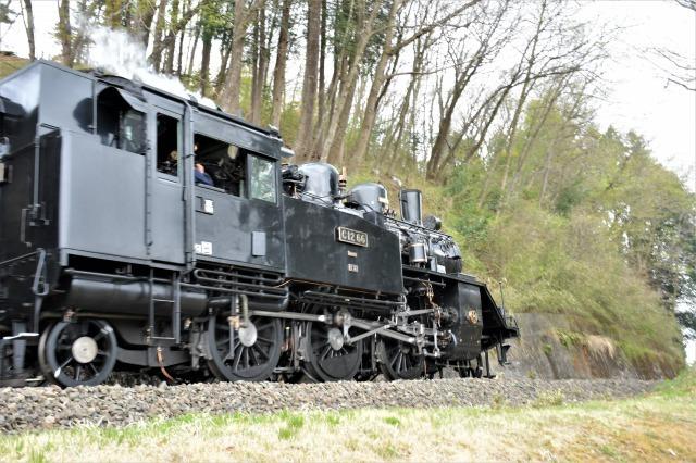 桜巡り2021 ~ 名残りの枝垂れ桜と蒸気機関車_b0356401_21570626.jpg