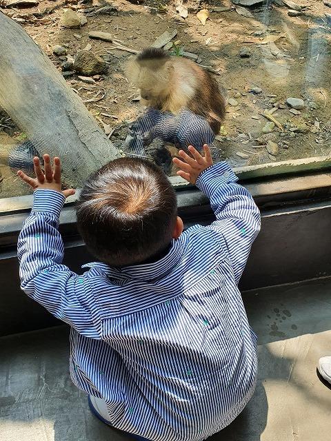 家族連れでも、おひとりさまでも楽しめる台北市立動物園♪_b0182708_20433192.jpg