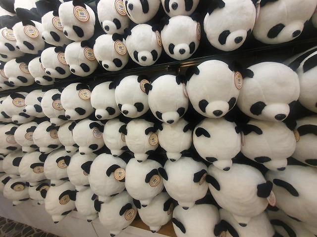 家族連れでも、おひとりさまでも楽しめる台北市立動物園♪_b0182708_20531253.jpg