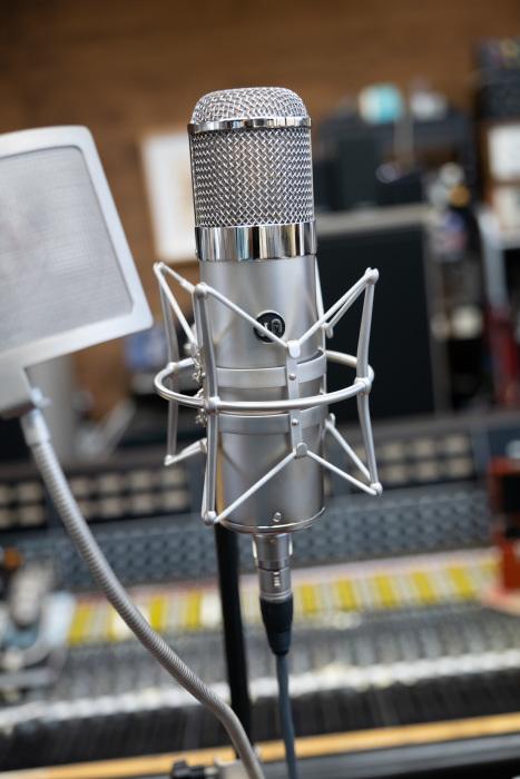 WARM  WA47 Microphone_d0192712_11251670.jpg