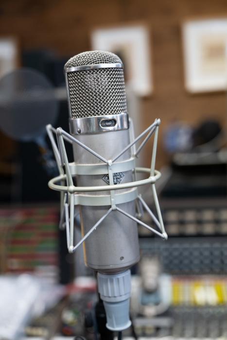 WARM  WA47 Microphone_d0192712_11253079.jpg
