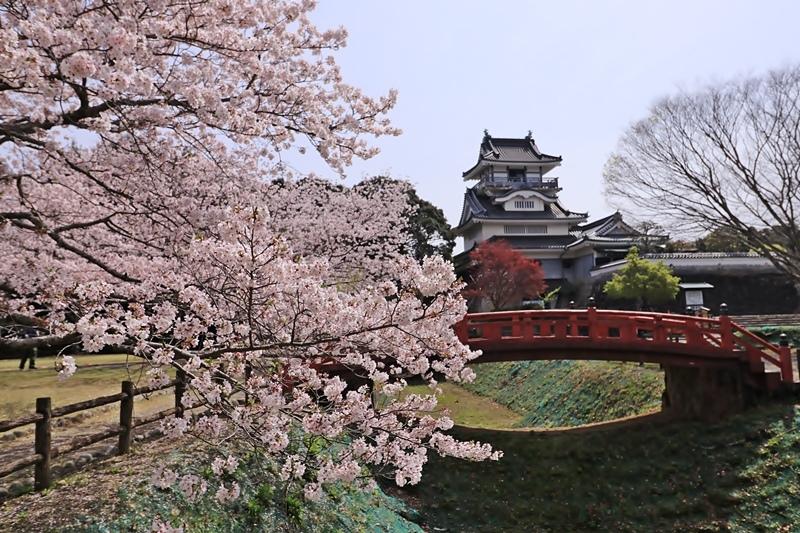 小山城と桜♪ - happy-cafe*vol.2