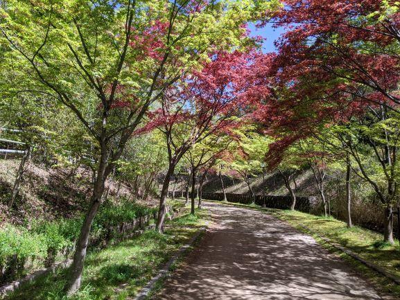 今日もむらさき公園_d0355872_22262616.jpg