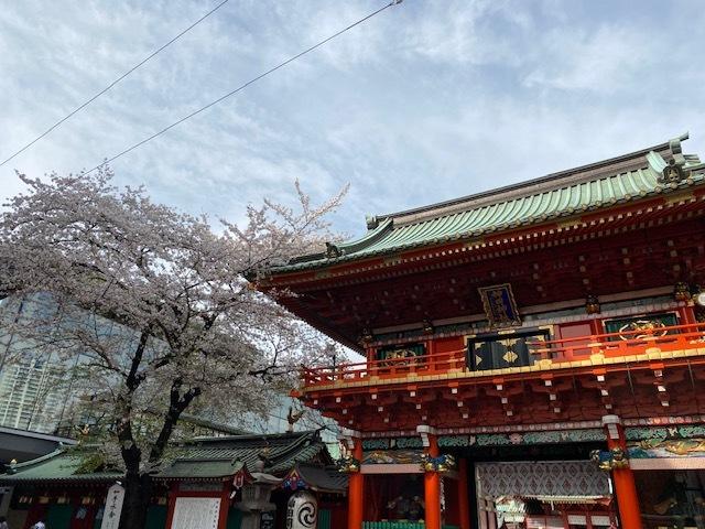 2021年の桜(2)_b0129897_05081488.jpg