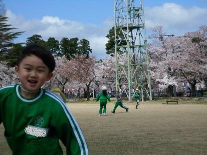 ゆり・すみれ組 お花見に行きました♪_c0212598_16142658.jpg