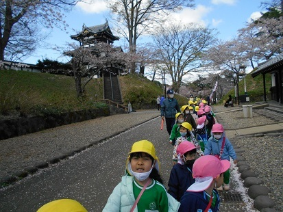 ゆり・すみれ組 お花見に行きました♪_c0212598_16144238.jpg