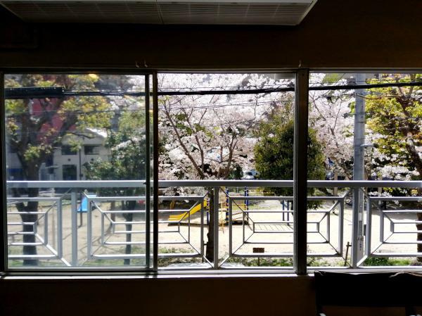 桜_e0069308_16223219.jpg