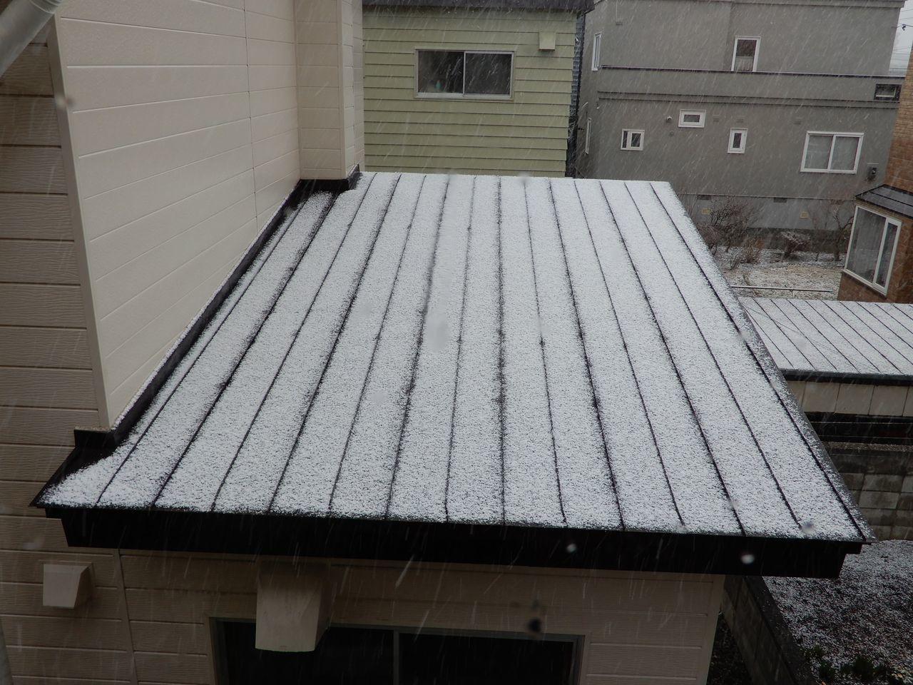 雪景色が戻ってきた_c0025115_21542058.jpg