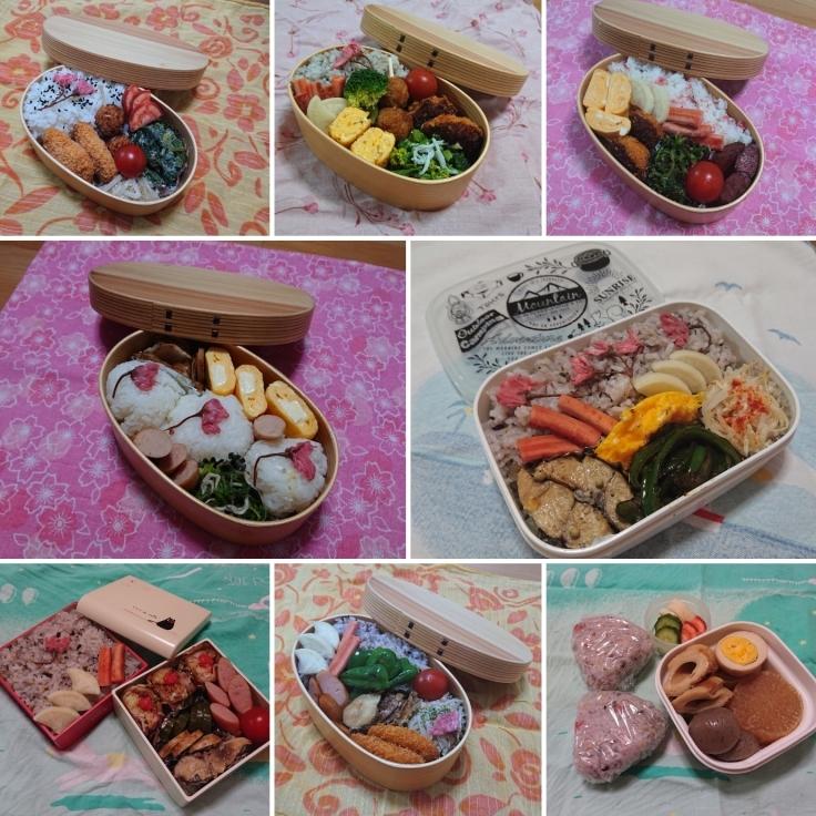 桜の花ごはん de 毎日のお弁当_d0361028_00004214.jpg
