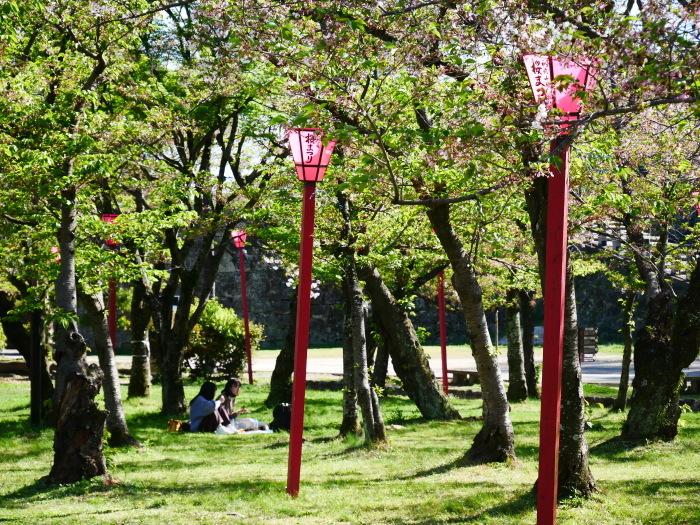 桜からつつじへそして新緑へ  2021-04-09 00:00_b0093754_22133636.jpg