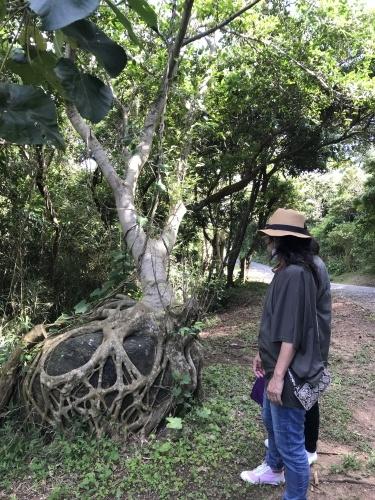 Walk around in Yomitan with my dear friend._c0153966_16371050.jpeg